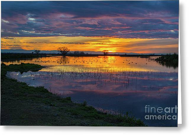 Sunrise At The Merced National Wildlife Refuge Greeting Card