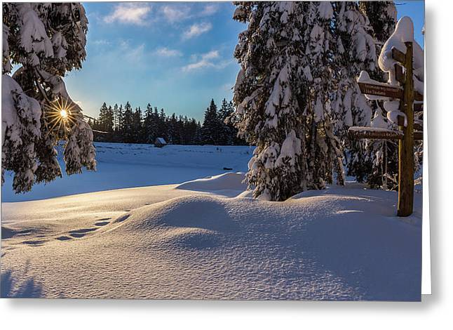 sunrise at the Oderteich, Harz Greeting Card