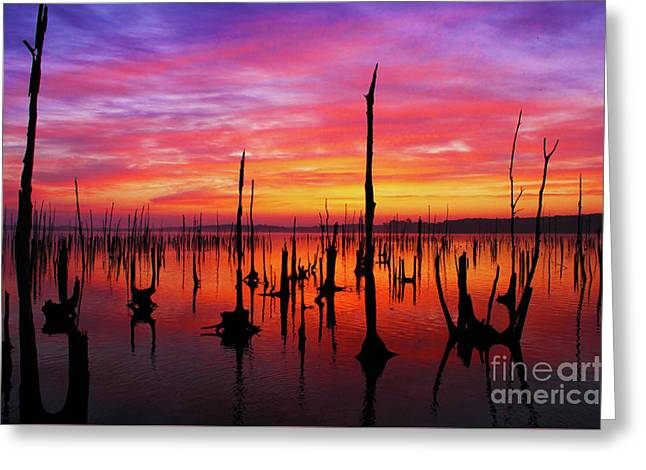 Sunrise Awaits Greeting Card by Roger Becker