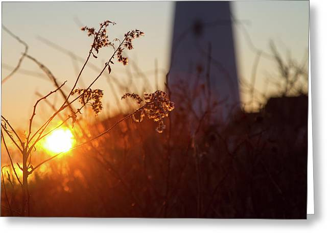 Sunrise Backlight Greeting Card