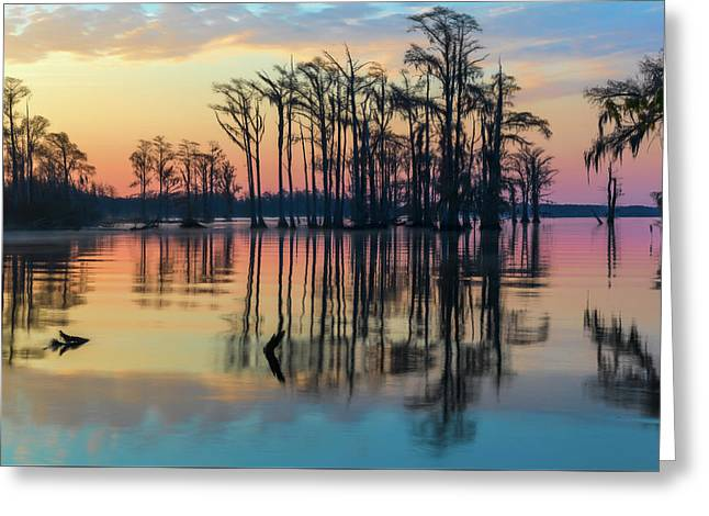 Greeting Card featuring the photograph Sunrise, Bald Cypress Of Nc  by Cindy Lark Hartman