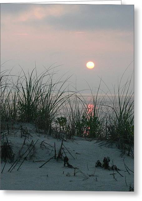 Sunrise Beyond The Sea Grass Greeting Card by Carla Neufeld