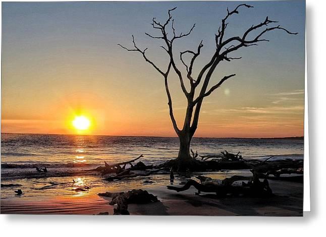 Sunrise Big Talbot Island Greeting Card by William Randolph