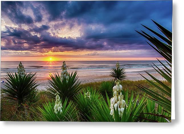 Sunrise Blooms Greeting Card