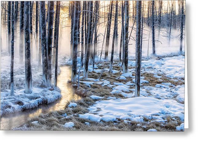 Sunrise Creek Greeting Card by Doug Oglesby