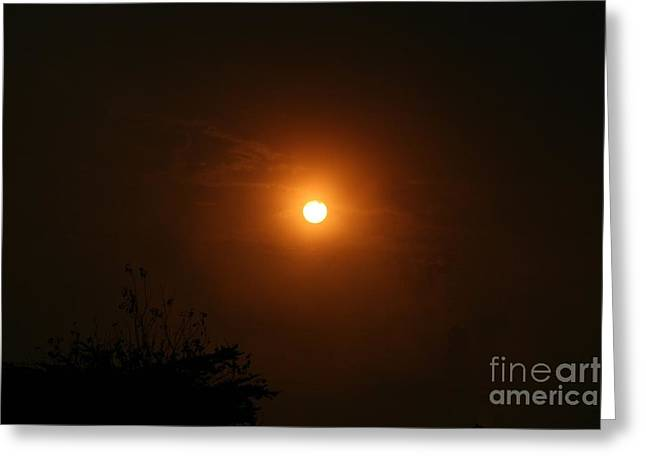 Greeting Card featuring the photograph Sunrise  by Cynthia Marcopulos