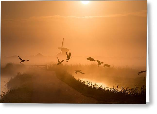 Sunrise Flight Greeting Card by Harm Klaverdijk