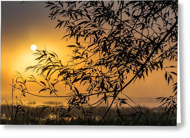 Sunrise Fog Greeting Card