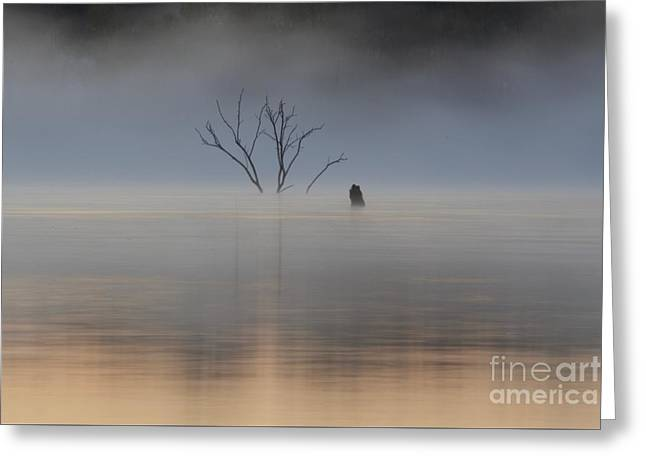 Sunrise Fog Over Water Greeting Card