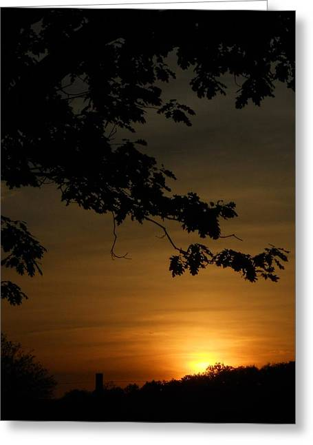 Sunrise Gold Greeting Card
