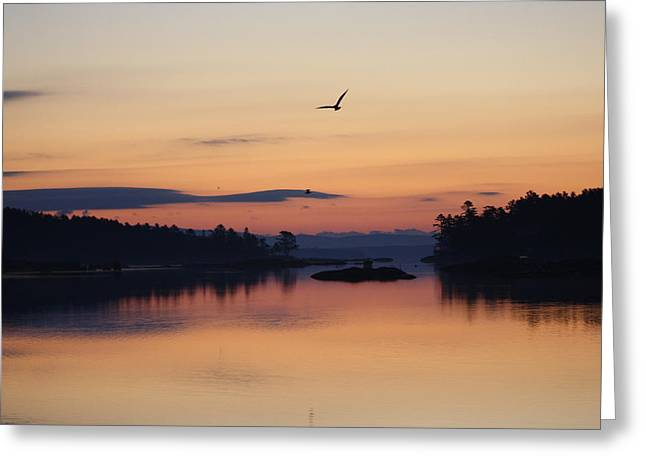 Sunrise In Blue Hill V Greeting Card by Greg DeBeck