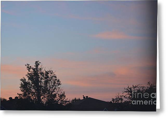 Sunrise In Denton Greeting Card by Ruth Housley