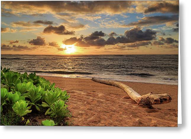 Greeting Card featuring the photograph Sunrise In Kapaa by James Eddy