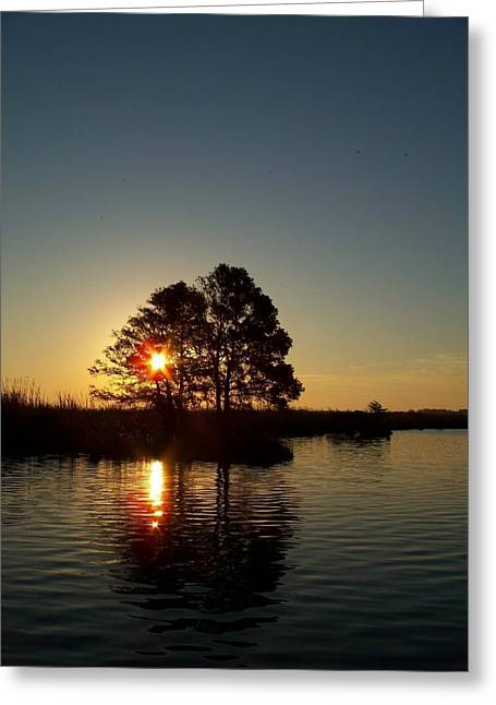 Sunrise In Moyock Nc Greeting Card