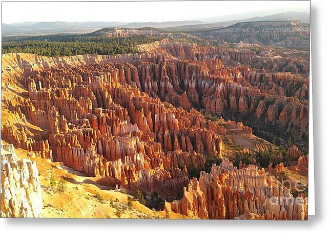Sunrise In The Canyon Greeting Card