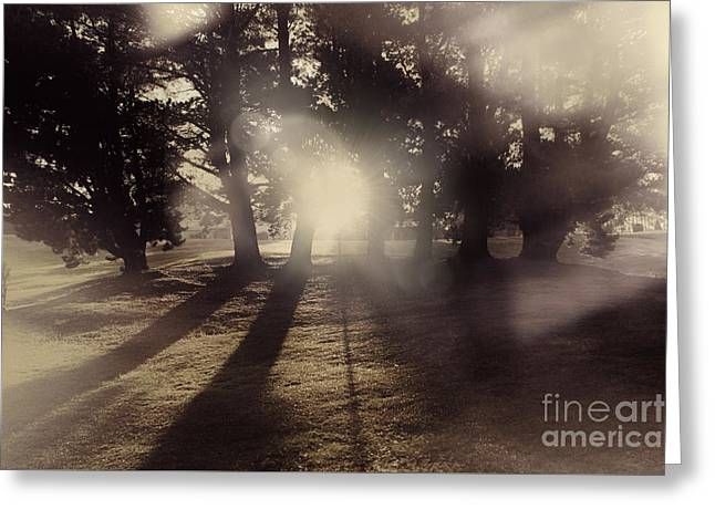 Sunrise Meadow. Artistic Vintage Landscape Greeting Card by Jorgo Photography - Wall Art Gallery