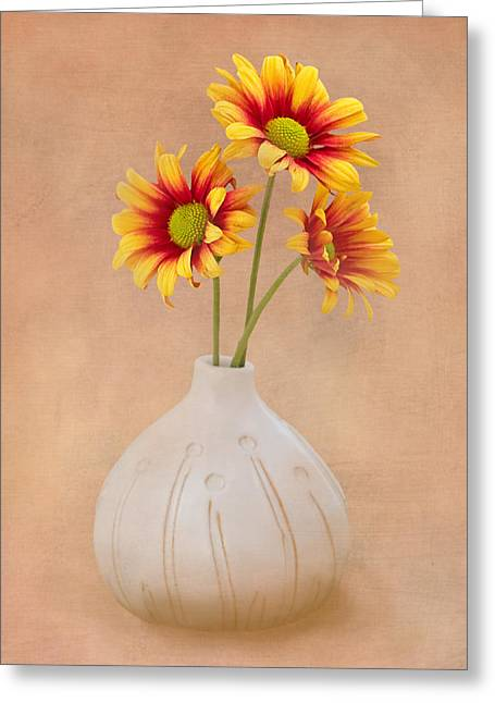 Sunrise Mums Greeting Card by Tom Mc Nemar