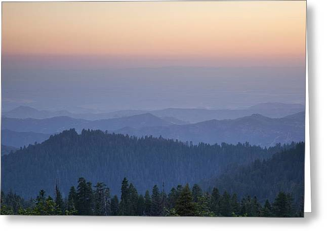 Sunrise Of Sequoia Greeting Card by Rick Pham