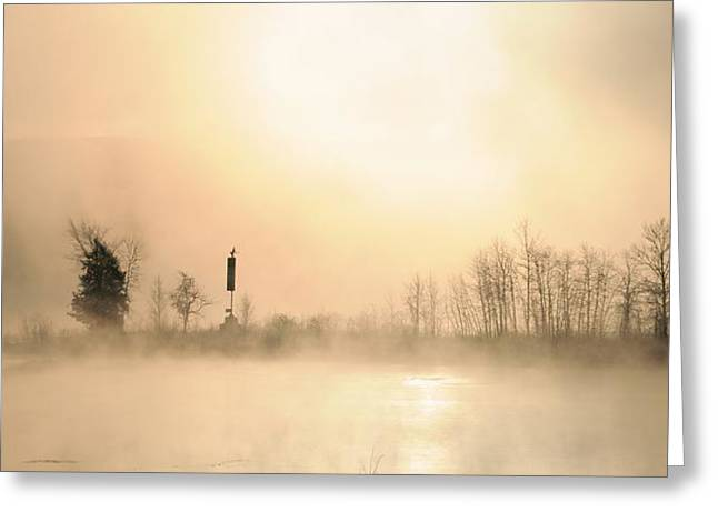 Sunrise On A Foggy Morning Greeting Card by Louise Fahy