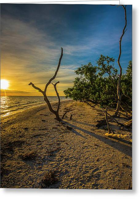 Greeting Card featuring the photograph Sunrise On Lighthouse Beach by Steven Ainsworth