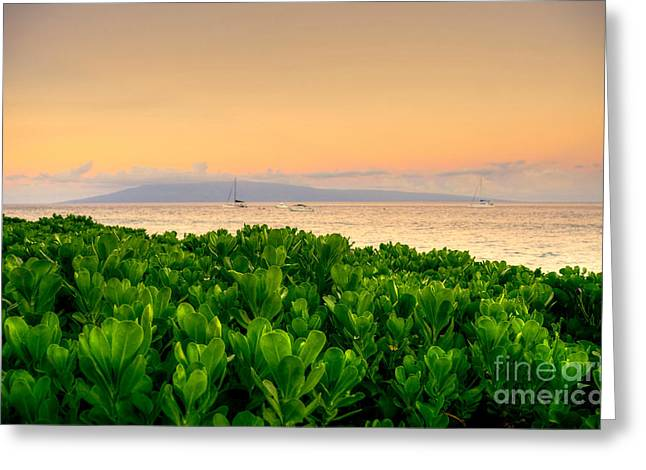 Greeting Card featuring the photograph Sunrise On Maui by Kelly Wade