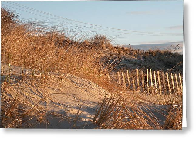 Sunrise On The Dunes Greeting Card by Donald Cameron