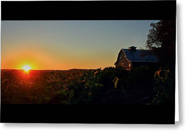 Greeting Card featuring the photograph Sunrise On The Farm by Chris Berry