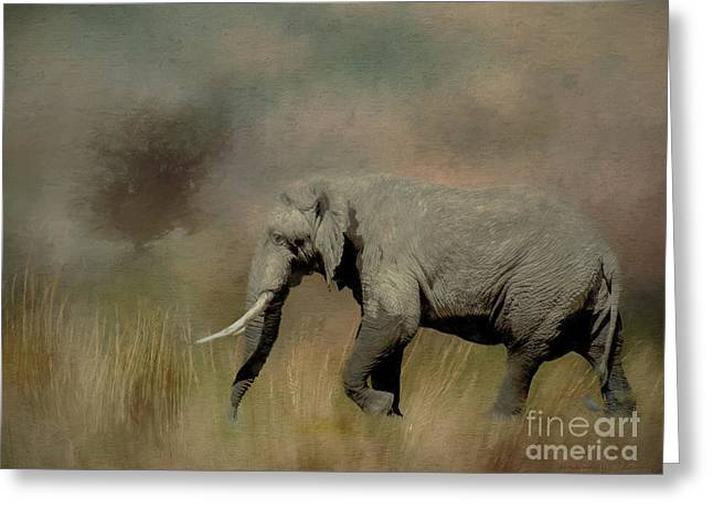 Sunrise On The Savannah Greeting Card
