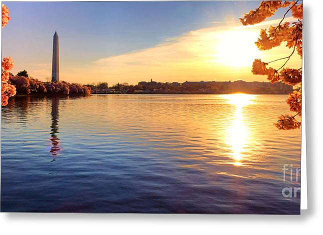 Sunrise On The Tidal Basin Greeting Card by Olivier Le Queinec