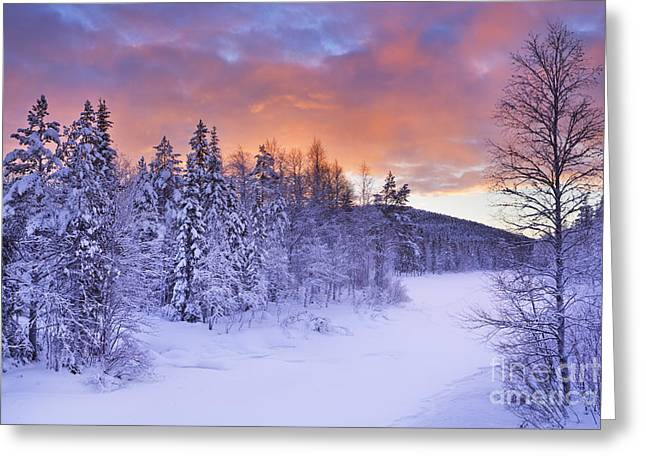 Sunrise Over A River In Winter Near Levi, Finnish Lapland Greeting Card