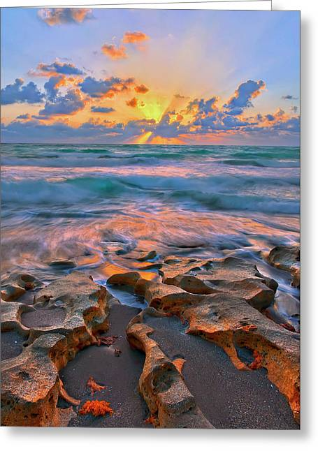 Greeting Card featuring the photograph Sunrise Over Carlin Park In Jupiter Florida by Justin Kelefas