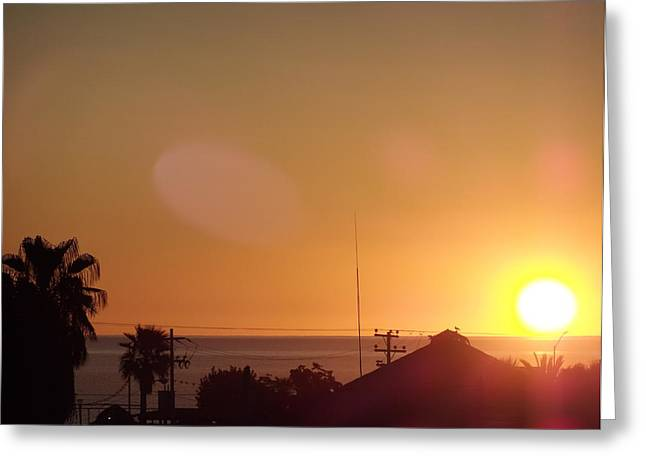 Sunrise Over Sea Of Cortez Greeting Card by Staci Black
