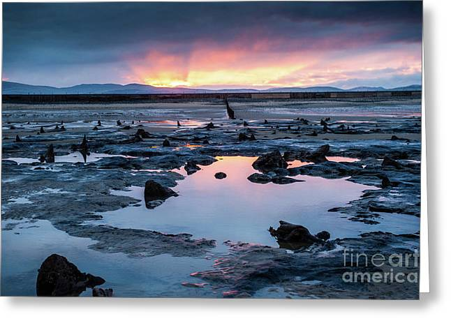 Sunrise Over The Bronze Age Sunken Forest At Borth On The West Wales Coast Uk Greeting Card