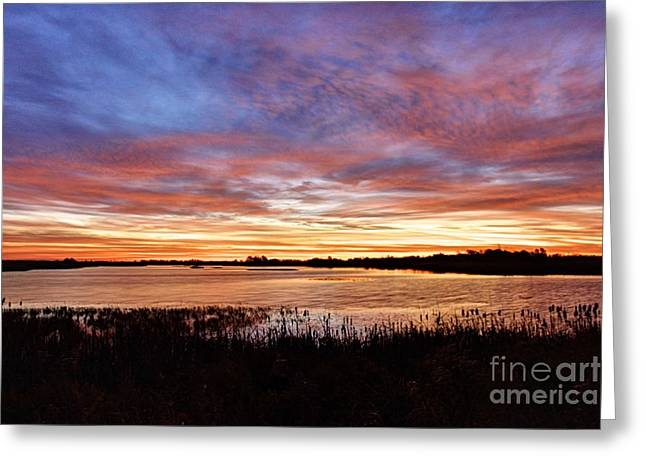 Sunrise Over The Marsh Greeting Card by Larry Ricker