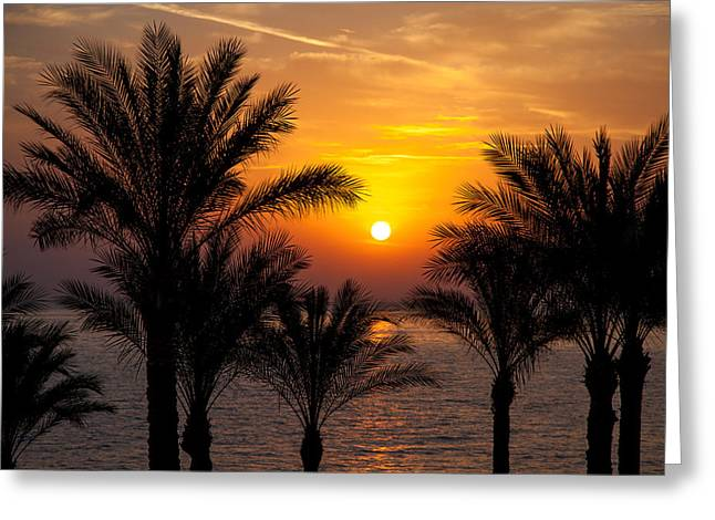 Warm Greeting Cards - Sunrise over the Red Sea Greeting Card by Jane Rix