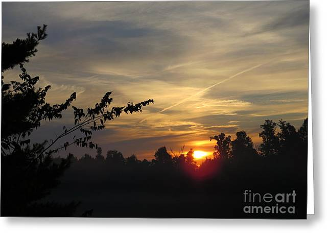 Sunrise Over The Trees Greeting Card