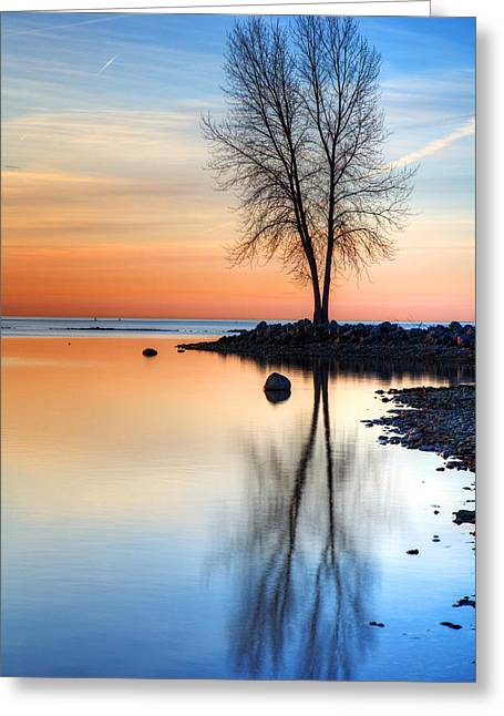 Sunrise Palette Greeting Card by James Marvin Phelps