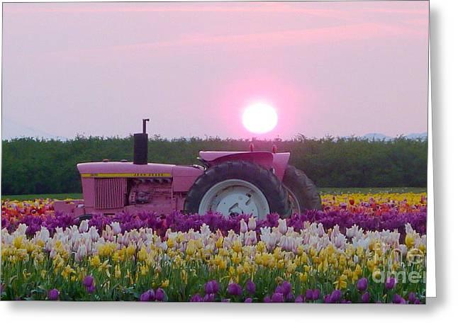 Sunrise Pink Greets John Deere Tractor Greeting Card