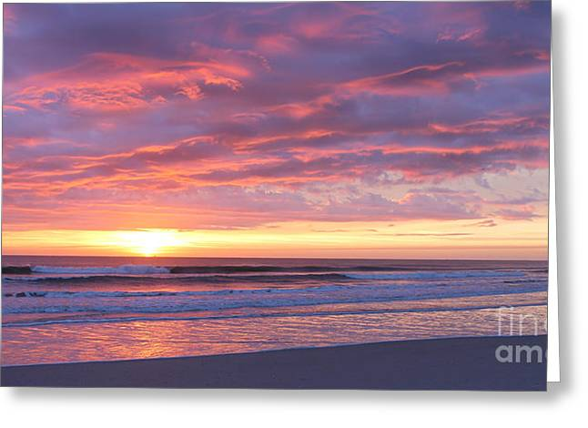 Sunrise Pinks Greeting Card
