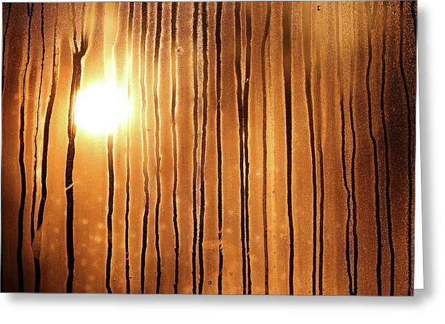 Sunrise Greeting Card by Robin Street-Morris