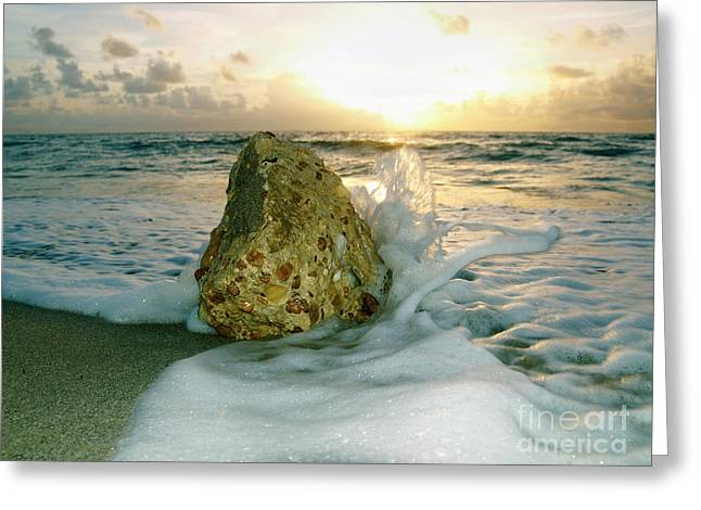 Sunrise Seascape Wisdom Beach Florida C4 Greeting Card
