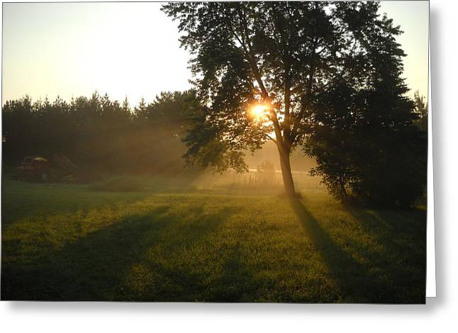 Sunrise Shadows Through Fog Greeting Card