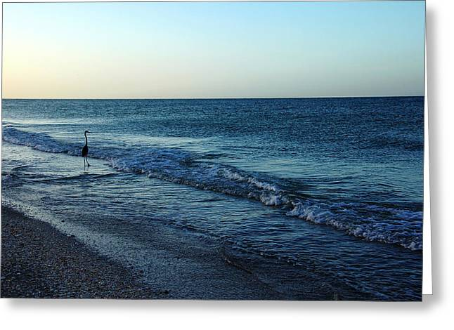Sunrise Solitude Greeting Card by Debbie Oppermann