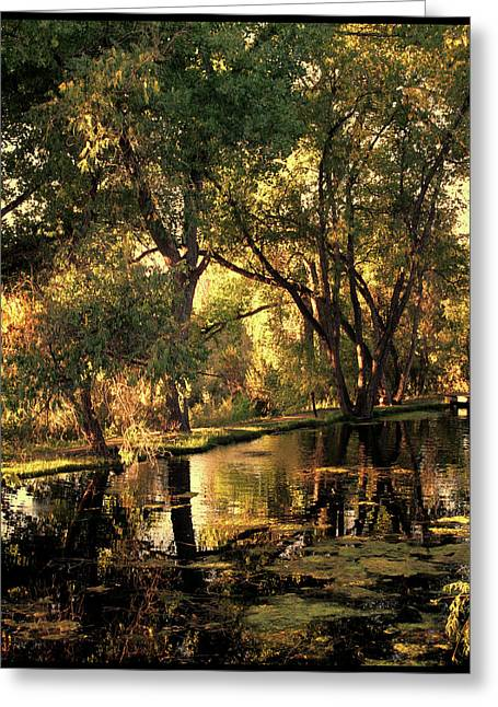 Sunrise Springs Greeting Card by Paul Cutright