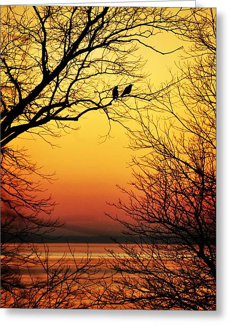 Two Crows Greeting Cards - Sunrise Submission Greeting Card by Rebecca Sherman