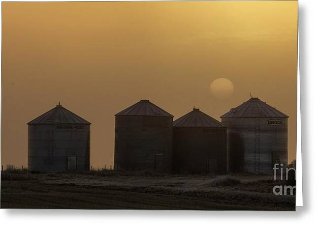 Sunrise Through The Fog Greeting Card by Brad Allen Fine Art