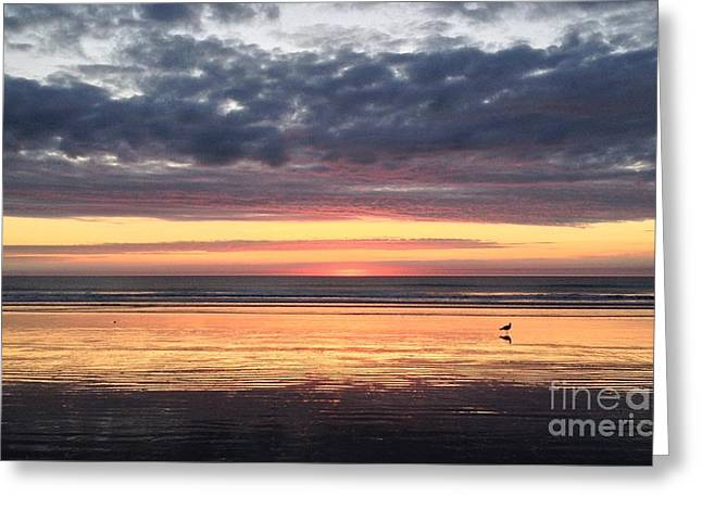 Sunrise With Gull Greeting Card
