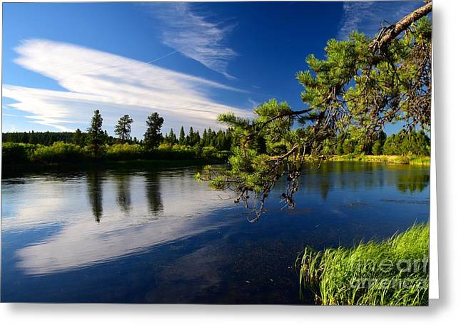 Sunriver Spectacular Greeting Card by Johanne Peale