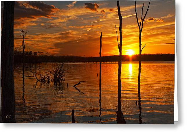 Greeting Card featuring the photograph sunset @ Reservoir by Angel Cher