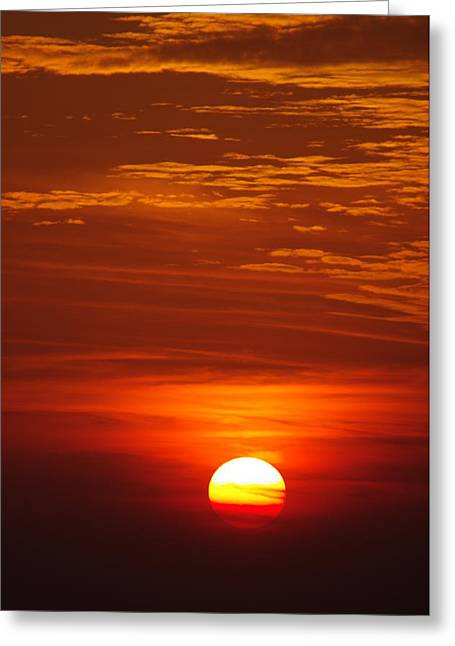 Sunset 13 Greeting Card by Don Prioleau